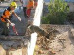 Adiestramiento de Perros en Búsqueda y Localización de Personas mediante Venteo, en Grandes Áreas
