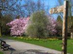 Orientación y Trazado de Recorridos en el Medio Natural o Urbano